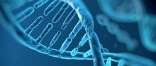 Verso il correttore genomico